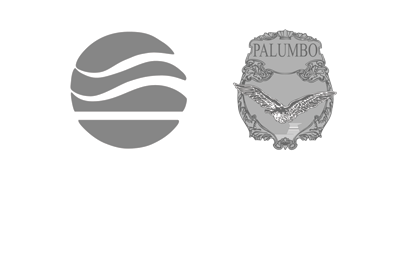 ISS Palumbo, Marine Logistics Company | Branding and Graphic Design